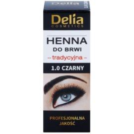 Delia Cosmetics Henna Wenkbrauwverf Tint  1.0 Black 2 g + 2 ml