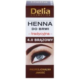 Delia Cosmetics Henna barva za obrvi odtenek 4.0 Brown 2 g + 2 ml