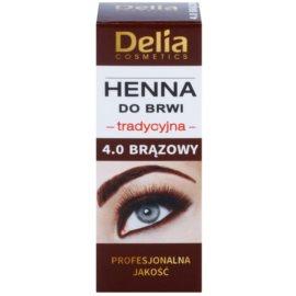 Delia Cosmetics Henna farbka do brwi odcień 4.0 Brown 2 g + 2 ml