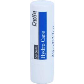 Delia Cosmetics Lip Balm Hydro Care hydratační balzám na rty  4,9 g