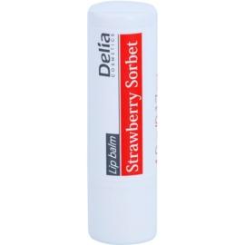 Delia Cosmetics Lip Balm Strawberry Sorbet feuchtigkeitsspendendes Lippenbalsam  4,9 g