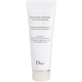 Dior Cleansers & Toners čisticí pěnivý gel pro suchou pleť  125 ml