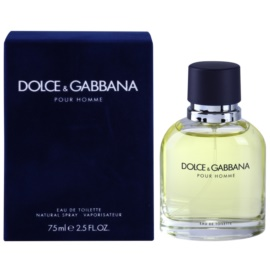 Dolce & Gabbana Pour Homme Eau de Toilette for Men 75 ml
