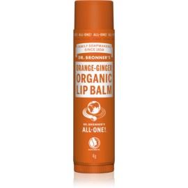 Dr. Bronner's Orange & Ginger balsam do ust  4 g