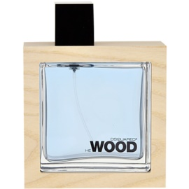 Dsquared2 He Wood Ocean Wet Wood Eau de Toilette für Herren 100 ml