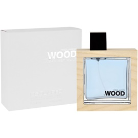 Dsquared2 He Wood Ocean Wet Wood eau de toilette para hombre 100 ml