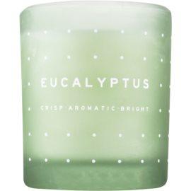 DW Home Eucalyptus lumanari parfumate  371,3 g