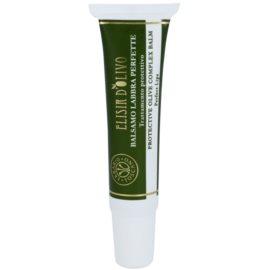 Erbario Toscano Elisir D'Olivo balsam ochronny do ust (Olive Oil, Almond Oil and Shea Butter) 15 ml