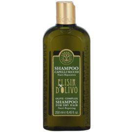 Erbario Toscano Elisir D'Olivo Haarshampoo mit  Olivenöl  250 ml