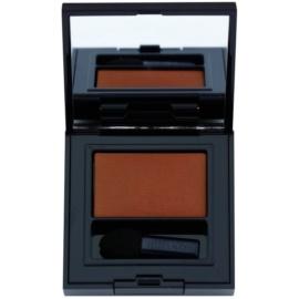 Estée Lauder Pure Color Envy Matte dlouhotrvající oční stíny s aplikátorem odstín 25 Fierce Sable 1,8 g