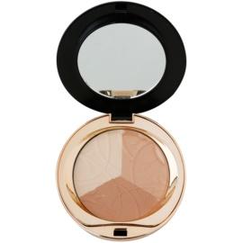 Eveline Cosmetics Celebrities Beauty matující pudr s minerály odstín 204 Shimmer  9 g