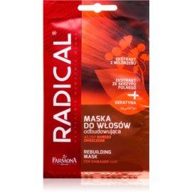 Farmona Radical Damaged Hair Restorative Mask for Damaged Hair  20 g