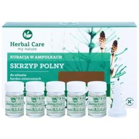 Farmona Herbal Care Horsetail intensywna kuracja do bardzo zniszczonych włosów  5 x 5 ml