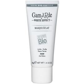 Gamarde White Effect čisticí maska pro rozjasnění pleti  40 g