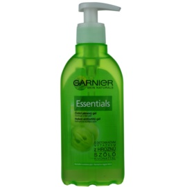 Garnier Essentials Purifying Foam Gel For Normal To Mixed Skin  200 ml
