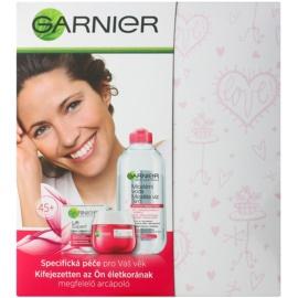Garnier Skin Cleansing kosmetická sada I.