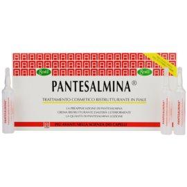 Gestil Pantesalmina regenerierende Kur für geschwächtes Haar  12x15 ml