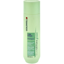 Goldwell Dualsenses Green Pure Repair šampon pro namáhané a poškozené vlasy  250 ml