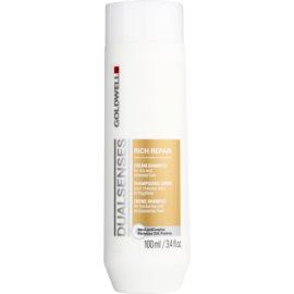 Goldwell Dualsenses Rich Repair Regenerating Shampoo for Dry and Damaged Hair  100 ml