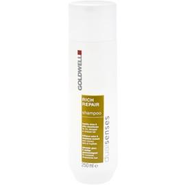 Goldwell Dualsenses Rich Repair champô regenerador para cabelo seco a danificado  250 ml