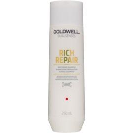 Goldwell Dualsenses Rich Repair erneuerndes Shampoo für trockenes und beschädigtes Haar  250 ml