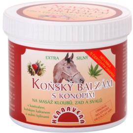 Herbavera Body Massage bálsamo de castaño de Indias y cáñamo   500 ml