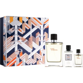 Hermès Terre d'Hermès lote de regalo XXII.  eau de toilette 100 ml + eau de toilette 12,5 ml + loción after shave 40 ml