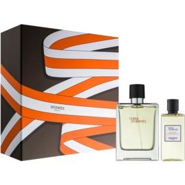 Hermès Terre d'Hermès ajándékszett XIX.   Eau de Toilette 100 ml + tusfürdő gél 80 ml