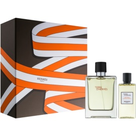 Hermès Terre D'Hermes Gift Set XIX.  Eau De Toilette 100 ml + Shower Gel 80 ml