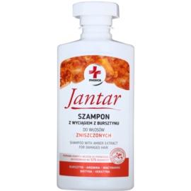 Ideepharm Medica Jantar Sampon pentru păr deteriorat  330 ml