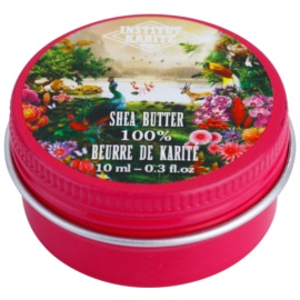 Institut Karité Paris Jungle Paradise 100% manteiga da bambu para rosto, corpo e cabelo  10 ml