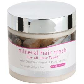 Jericho Hair Care vlasová minerální maska pro všechny typy vlasů  200 g