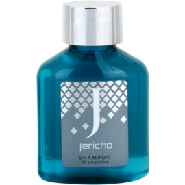 Jericho Collection Shampoo champú para todo tipo de cabello  65 ml