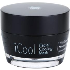 Jericho iMask Collection iCool Máscara facial refrescante com minerais do Mar Morto  50 g