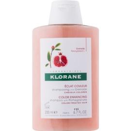 Klorane Pomegranate Shampoo für gefärbtes Haar  200 ml