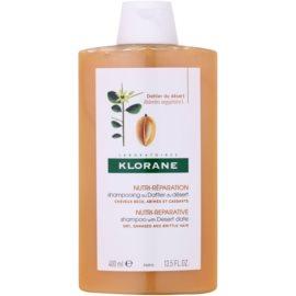 Klorane Dattier Shampoo für brüchiges und strapaziertes Haar  400 ml