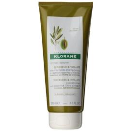 Klorane Olive Extract condicionador fortificante para o cabelo maduro  200 ml