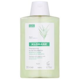 Klorane Papyrus Milk szampon do włosów suchych, trudno poddających się stylizacji  200 ml