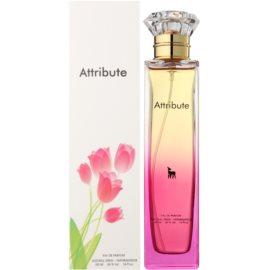Kolmaz Attribute Eau de Parfum für Damen 100 ml