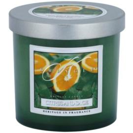 Kringle Candle Citrus and Sage vonná svíčka 141 g