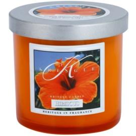 Kringle Candle Hibiscus vonná svíčka 141 g