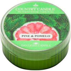 Kringle Candle Country Candle Pine & Pomelo candela scaldavivande 42 g