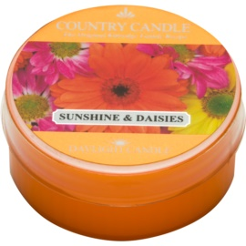 Kringle Candle Country Candle Sunshine & Daisies Teelicht 42 g