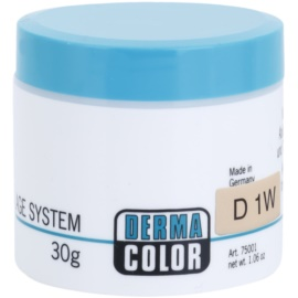 Kryolan Dermacolor Camouflage System krémový korektor a make-up v jednom odstín D 1W  30 g
