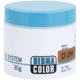 Kryolan Dermacolor Camouflage System krémový korektor make-up v jednom odtieň D 2W  30 g