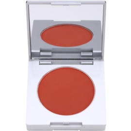 Kryolan Basic Face & Body kompaktní tvářenka se štětcem a zrcátkem odstín Shading Brown 8,5 g