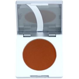 Kryolan Basic Eyes polvos bronceadores de cejas tono Auburn 3,5 g