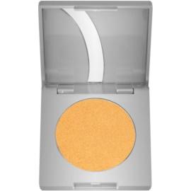 Kryolan Basic Eyes oční stíny odstín Gold G Iridescent 2,5 g