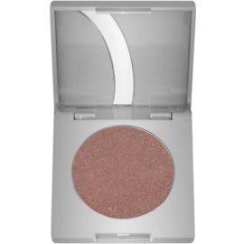 Kryolan Basic Eyes oční stíny odstín Amber G Iridescent 2,5 g