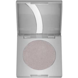 Kryolan Basic Eyes oční stíny odstín Pepple G Iridescent 2,5 g